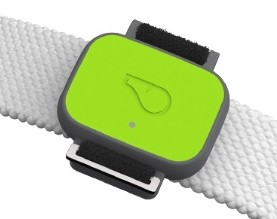 Whistle FIT Dog Fitness Tracker on Collar