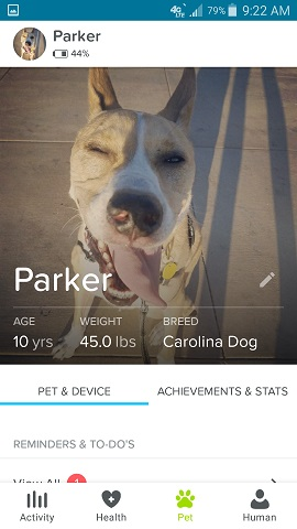 Whistle App Parker the Dog Stats