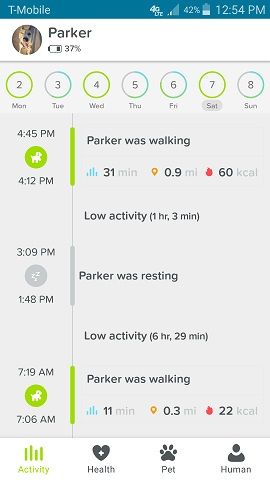 Whistle App Parker the Dog's Daily Activity by Hour