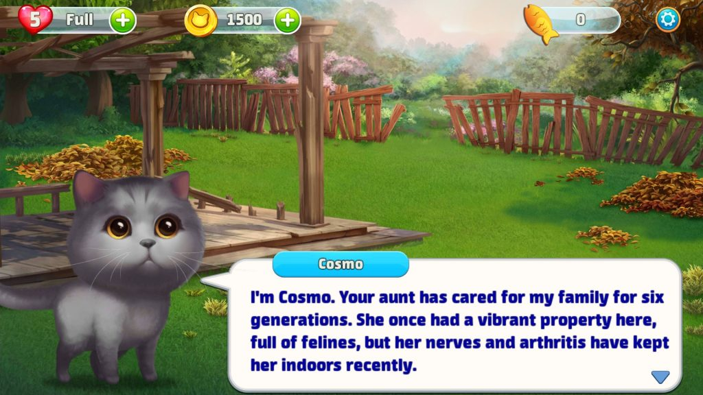 Meow Match Backyard Design With Cosmo