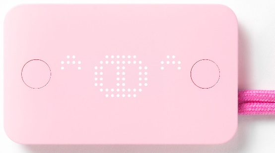 Pigzbe Digital Piggy Bank