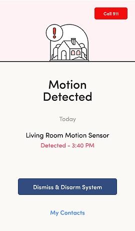 Kangaroo App Motion Detected Screen