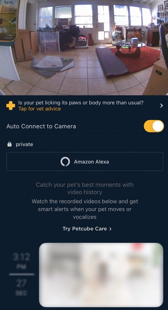 Petcube Bites 2 App Alexa Connect